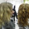 Växtfärgning grått hår